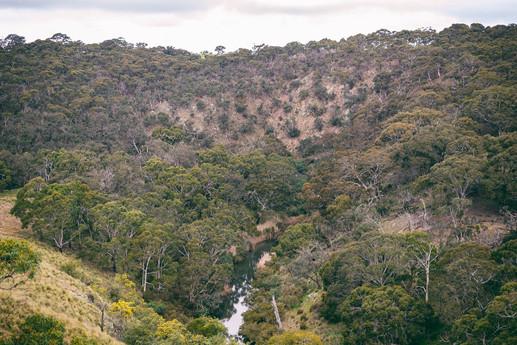 Moorabool Valley #3