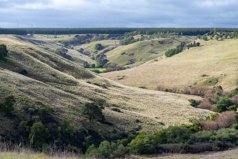 Moorabool Valley #5