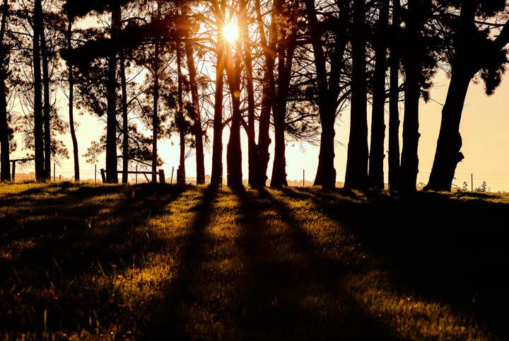 Sunset on Bellarine Peninsula