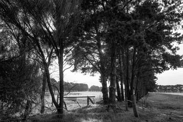 Bellarine Peninsula property