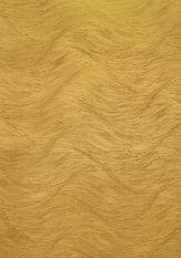 toros gold