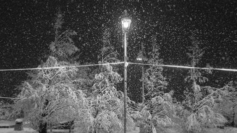 SNOWY METHVEN