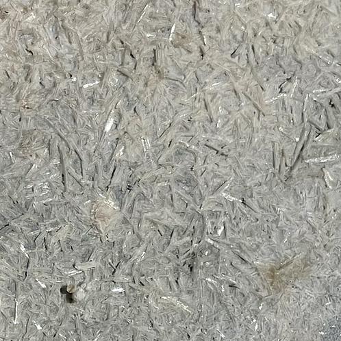 Chaga (Inonotus obliquus) Spagyric Tincture