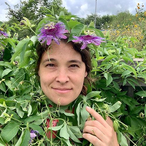 Passion Flower (Passiflora incarnata) Spagyric Tincture