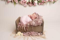 Newborn girl on dusky pinks