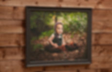 large frame b.jpg