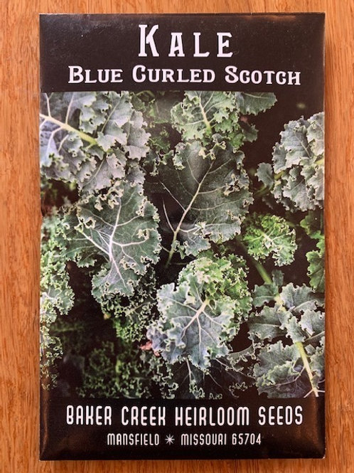 Kale - Blue Curled