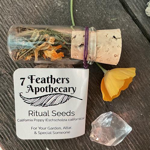 Ritual Seeds - California Poppy