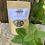 Thumbnail: Lemon Balm, Astragalus and Cacao Tea