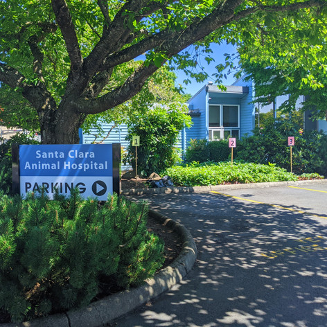Santa Clara Animal Hospital