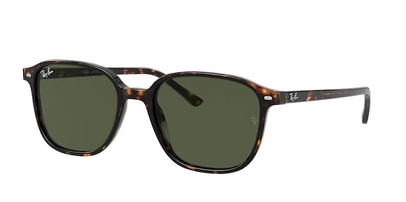 Ray-ban 2193 SOLE 902/31 51 18 145