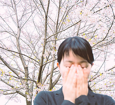 allergy_blossomsfb.jpeg