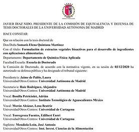 COMITE ESPAÑA.jpg