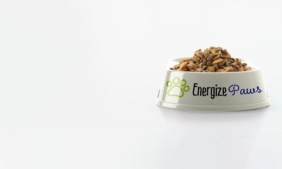 DLC-EnergizePaws_Header2 copy (1) copy.j