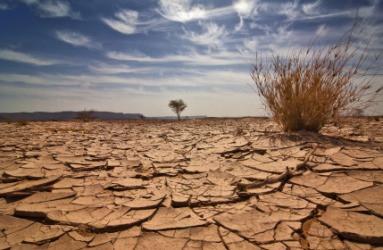 Redeeming Desolate Inheritances
