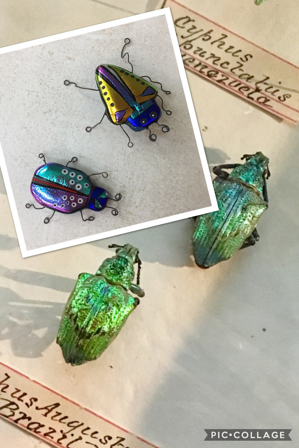 The Jewellery Boat Blog | Fused Glass Beetles | Eleanor Designs 2017