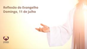 Reflexão do Evangelho: 15º Domingo do | TC Mc 6,7-13