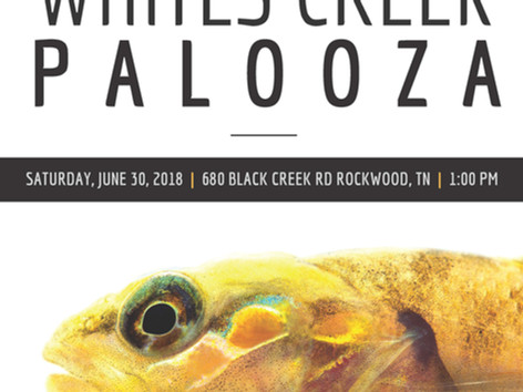 CFI Event Whites Creek Palooza 2018