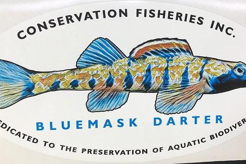 Bluemask Darter CFI sticker