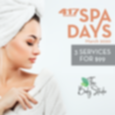 Spa Days Payment Page.png