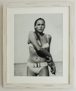 Framed_Hollywood_Movie_Star_Raquel_Welch_Portrait_Print