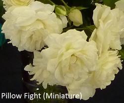Pillow Fight (Miniature)
