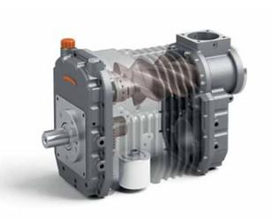 Vista a los rotores que no generan contacto entre si ni con la carcasa, trabajan sin engrace en la camara de compresión