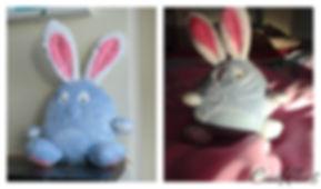 bunnyblu1.jpg