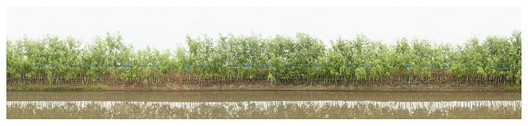 3横幅9张-河流,水7.jpg
