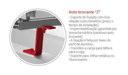 AUTO BROCANTE Z.jpg