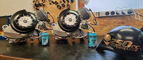 Egig 244ccm Motor