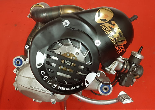 Egig 304ccm Motor