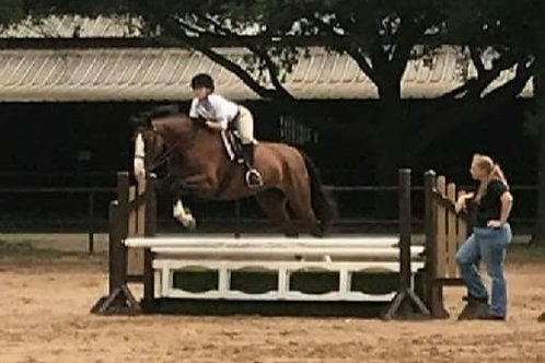 2 lessons/wk Own Horse