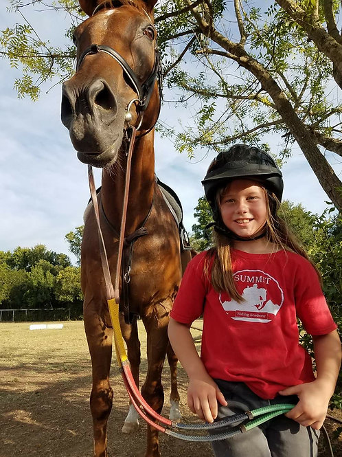 Lesson Package Own Horse - 1/wk