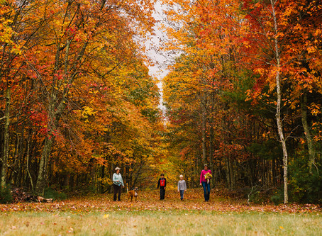 Enjoy these Fall Destinations