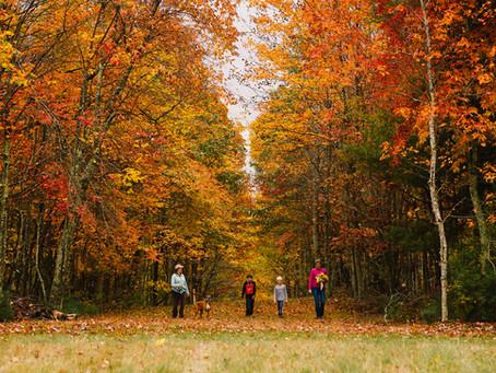 Enjoy these Fall Destinations