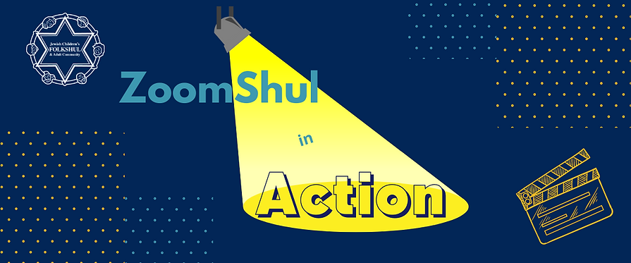 Zoomshul in Action graphic