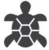 Turtle Clan.JPG