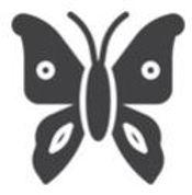 Butterfly Glyph.JPG
