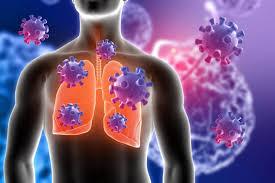 Immune Plant Medicine Part 2 - Organ Detox Program