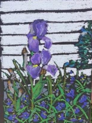 """Purple Iris""-original oil pastel-framed-8 x 10"""