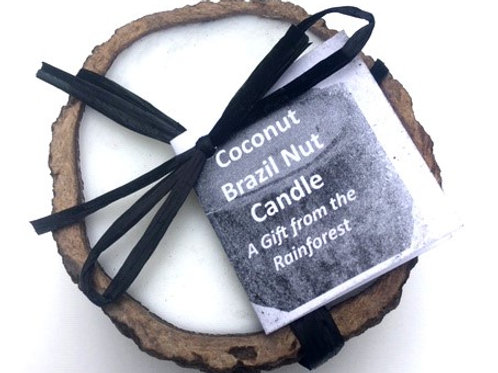 Brazil Nut Candle (Coconut)