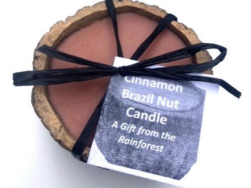 Brazil Nut Candle (Cinnamon)