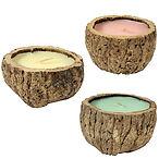 Brazil Nut Candle