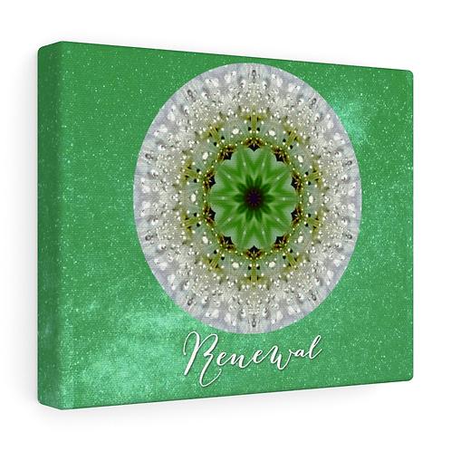 Mandala - Renewal