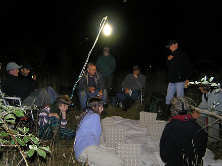 Suffolk Moth Group Hinderclay Fen Aug200
