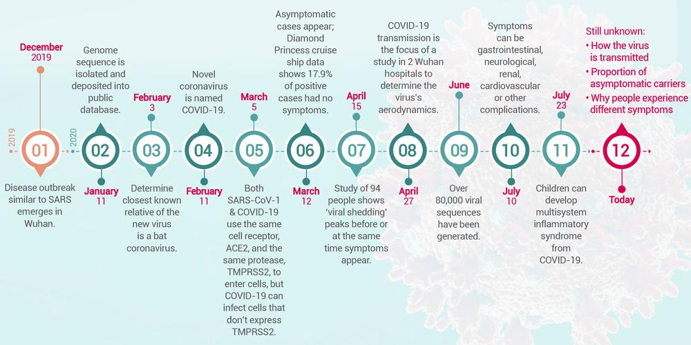 Progress report on the Coronavirus pandemic