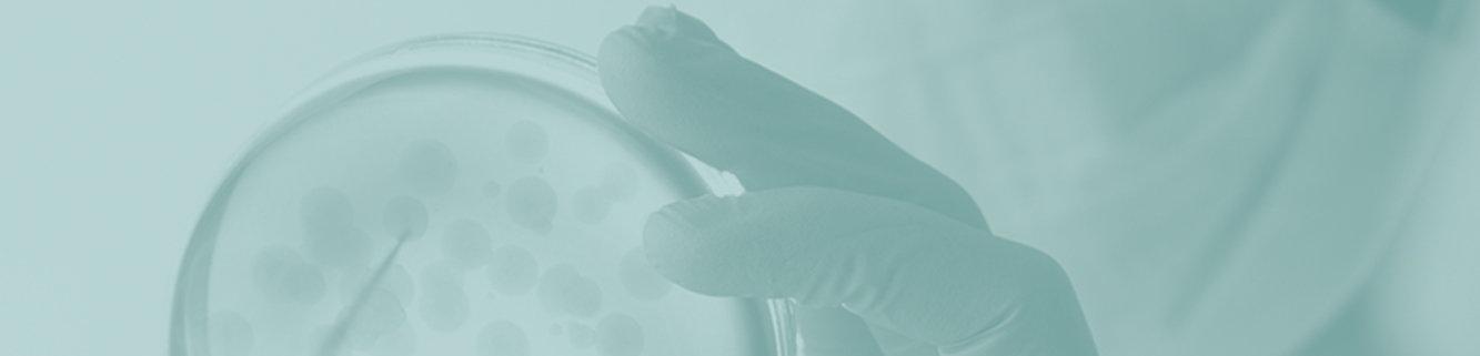 acutis-website-source-main-REVEAL-2.jpg