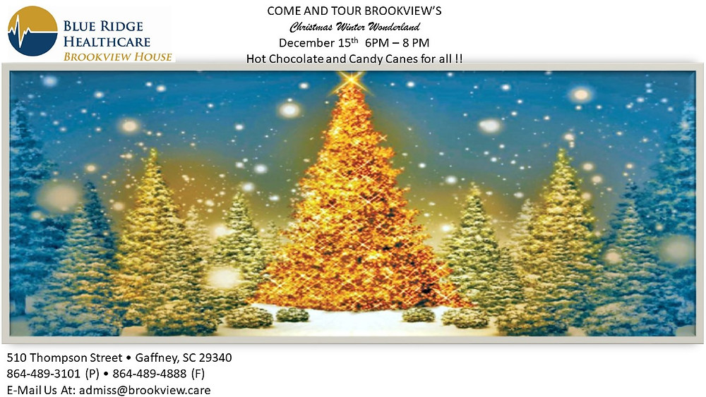 Christmas Winter Wonderland | Blue Ridge in Brookview | 510 Thompson St, Gaffney, SC, 293440