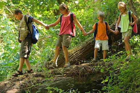 Mavericks-Camp-forest-04-1280x650.jpg